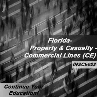 Florida - PROPERTY AND CASUALTY - COMMERCIAL LINES (6hrs CE) (INSCE022FL6)